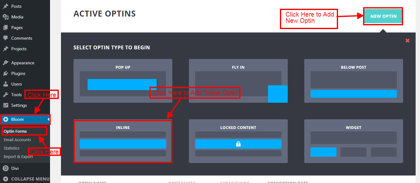 How to Create Super Slim Bloom Optin Form for Your Website